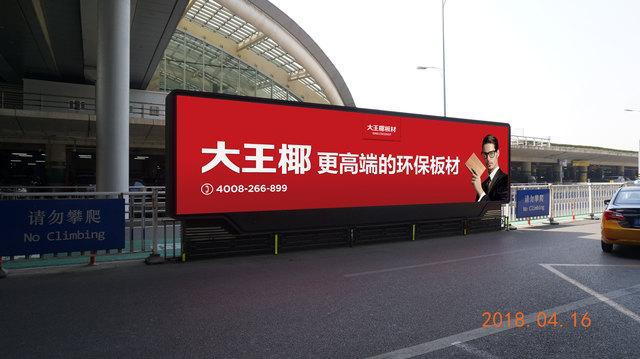 大王椰广告